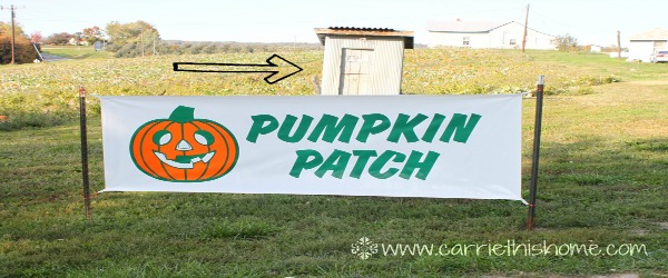 Pumpkin Patch Fail