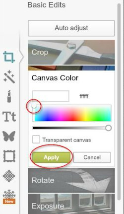 choose canvas color