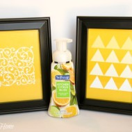 Get A High-End Look On A Budget With Softsoap Premium