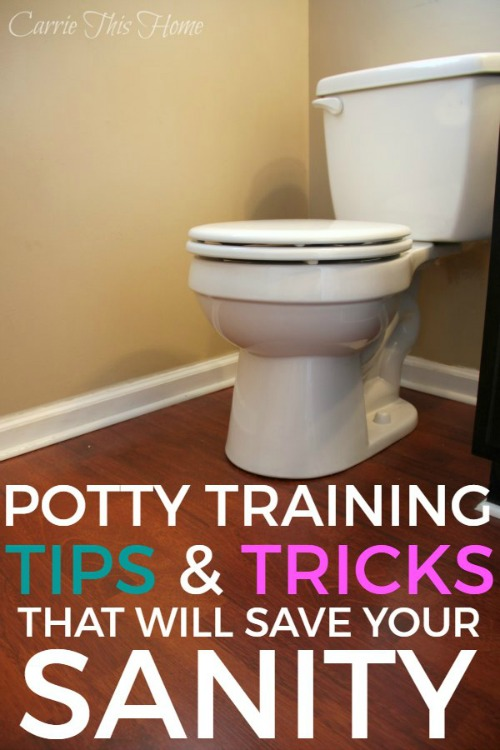 Easy Potty Training Tips House Training Dvds | Dog Breeds Picture