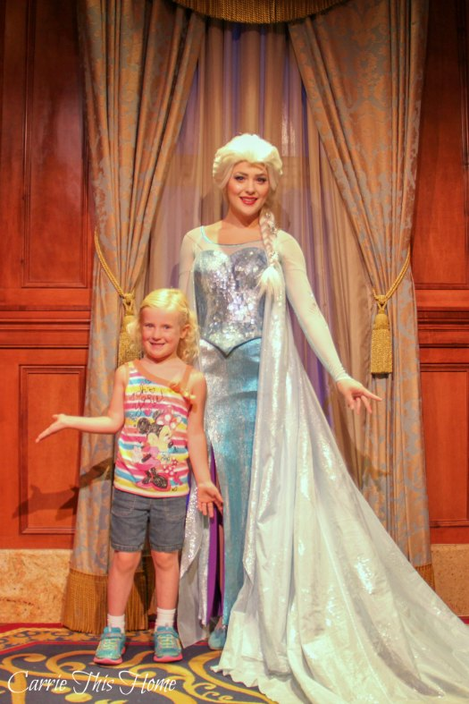 Character greet with Elsa!